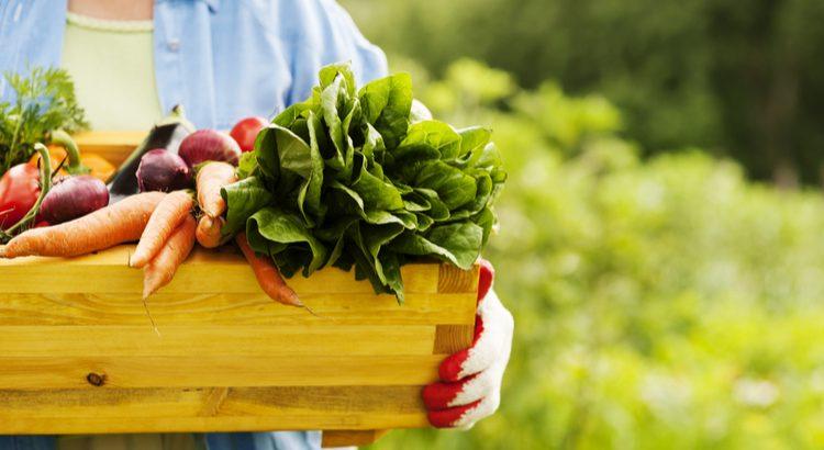 Hábitos saudáveis vs obesidade o papel do food service na saúde do brasileiro